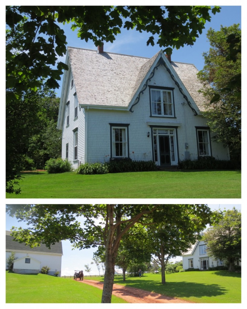 A random farm turned into a Anne of Green Gables Farm, also offering buggy rides with Mathew