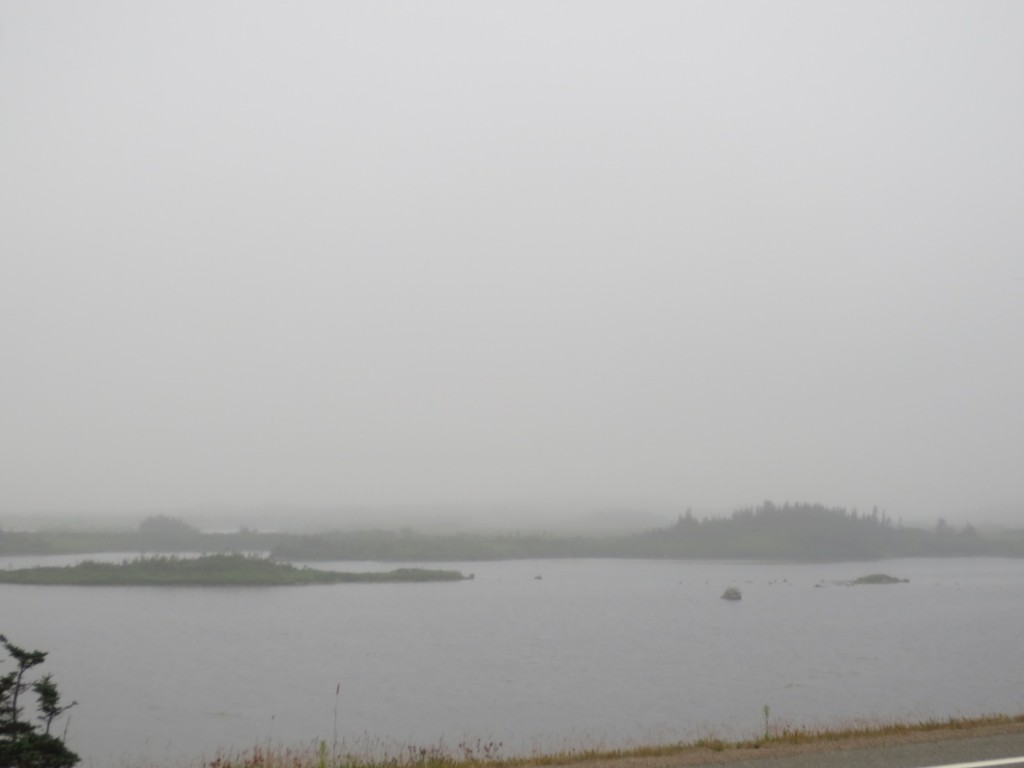 A little Newfoundland fog